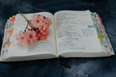 英語民間試験導入延期で落ち込んでいる受験生への3つの活用法
